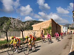 II Trobada Ciclista Llucmajor